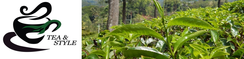 Tea & Style-Logo
